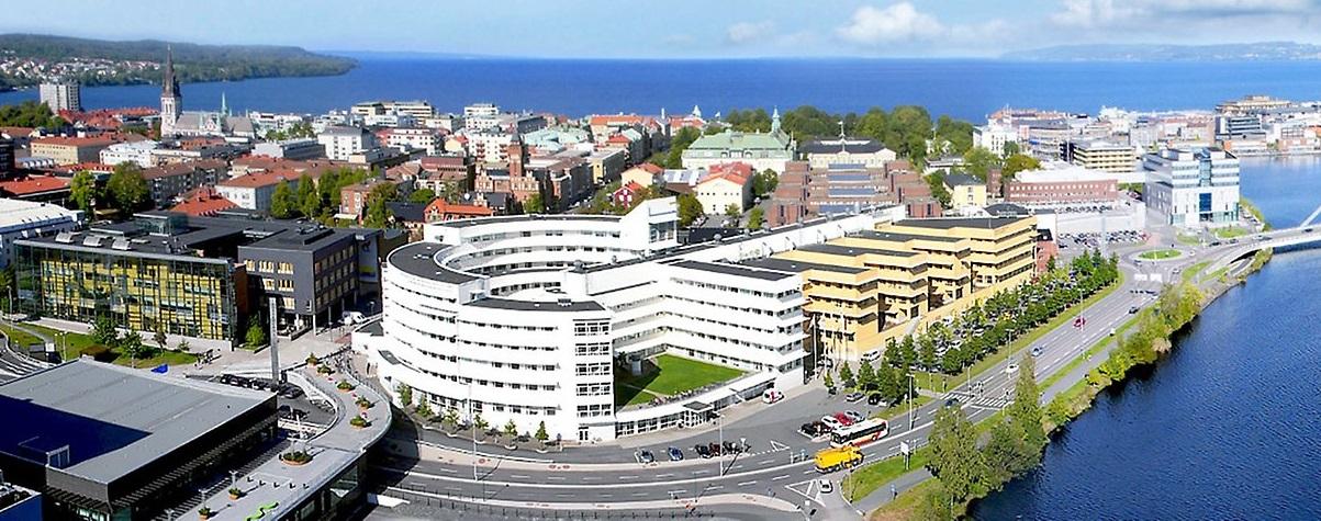 academic work jönköping